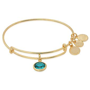 Alex and Ani December Charm Bangle Bracelet