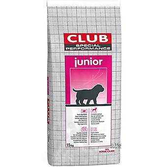 Royal Canin Special Club Performance Junior (Hunde , Hundefutter , Trockenfutter)