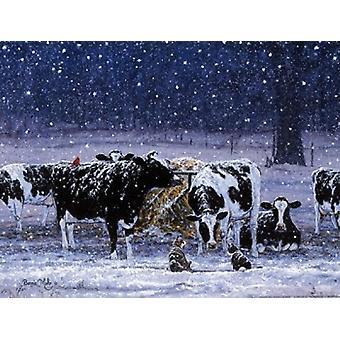 Een besneeuwde nacht Poster afdrukken door Bonnie Mohr (16 x 12)