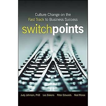 SwitchPoints - Culture Change on the Fast Track to Business Success by