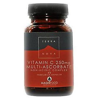 Terranova Vitamin C 250 mg 100 Capsules (Dietetics and nutrition , Multivitamins)