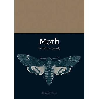 Moth by Matthew Gandy