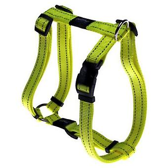 Rogz Harness Fanbelt Special (Dogs , Collars, Leads and Harnesses , Harnesses)
