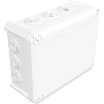 OBO Bettermann 2007541 Anschlussdose (L x b x H) 190 x 150 x 77 mm reinem weiß (RAL 9010) IP66