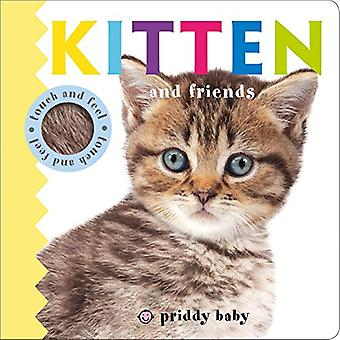 Kitten and Friends Touch and Feel (Baby Touch and Feel) [Board book]