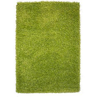 Tapis doux épais salon Shaggy vert