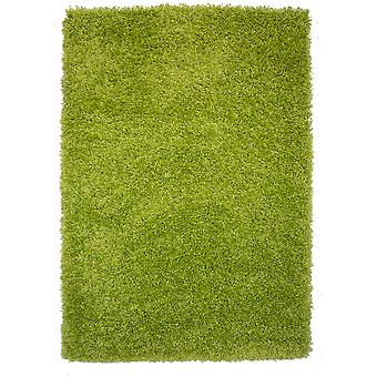 Mjuka tjocka gröna Shaggy Lounge mattor
