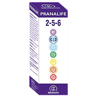Equisalud Pranalife 2-5-6 (Dietetics and nutrition , Bach Flower)