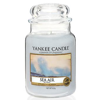 Yankee Candle Large Jar Candle, Classic Sea Air 623g