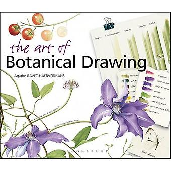 The Art of Botanical Drawing by Agathe Ravet-Haevermans - 97808819299