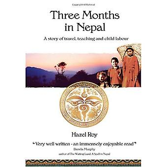 Three Months in Nepal: A Story of Travel, Teaching and Child Labour