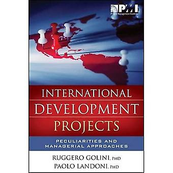 International Development Projects: Peculiarities and Managerial Approaches