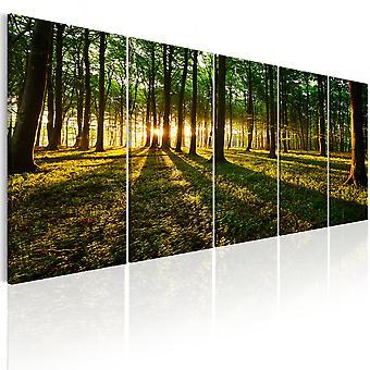 Canvas Print - Shade of Trees I