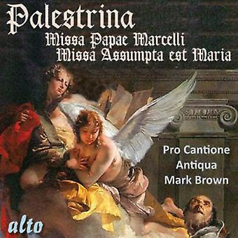 Pro Cantione Antiqua & Mark Brown - Palestrina: Missa Papae Marcelli; Missa Assumpta Est Maria [CD] USA import