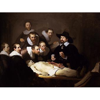 解剖学のレッスンの博士 Nicolaes、レンブラント ・ ファン ・ レイン、50x40cm