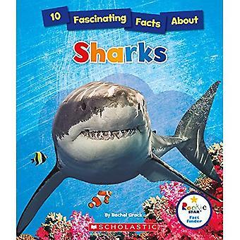 10 faszinierende Fakten über Haie (Rookie Sterne Tatsache Finder)
