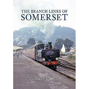 De taklijnen Somerset