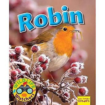 Wildlife Watchers: Robin: 2017 (Ruby Tuesday Readers)
