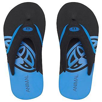 Animal Boys Jekyl Logo Flip Flops | Pacific Blue