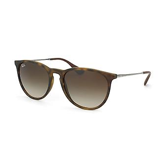 Ray-Ban Erika Classic RB4171 865/13 women's sunglasses