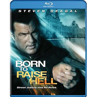 Steven Seagal - Born to Raise Hell [BLU-RAY] USA import