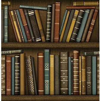 Bookcase Wallpaper Vintage Library Antique Heavyweight Luxury Fine Decor