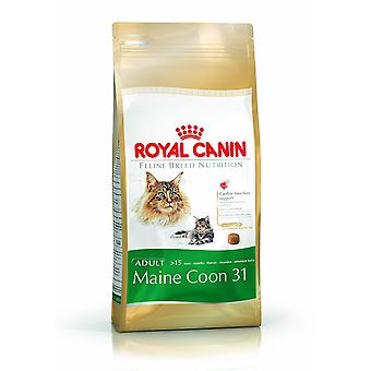 Royal Canin comida de felino gato Maine Coon 31 4Kg mezcla seca
