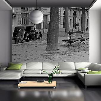Wellindal Wallpaper peaceful french street (Decoration , Vinyls)