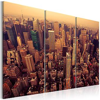 Quadro - Por do sol sobre Nova York