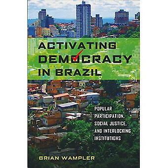 Activating Democracy in Brazil: Popular Participation, Social Justice, and Interlocking Institutions (From the...