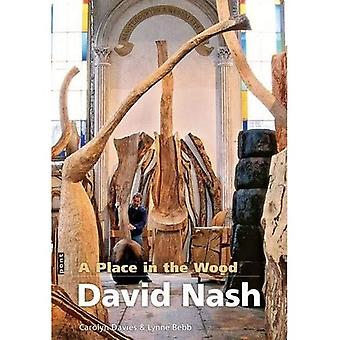 A Place in the Wood: David Nash