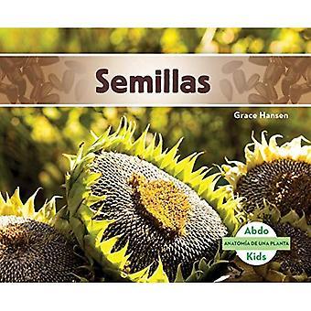 Semillas (Seeds) (Anatomia de Una Planta (Plant Anatomy))