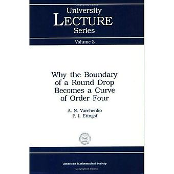 Why the Boundary of a Round Drop Becomes a Curve of Order Four