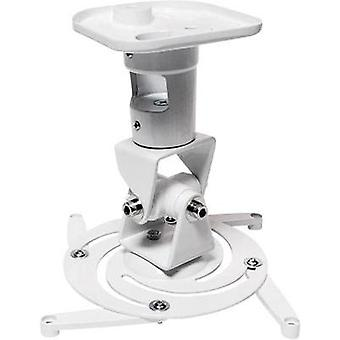 Projector ceiling mount Tiltable, Rotatable Max. distance to floor/ceiling: 22 cm LogiLink BP0003 White