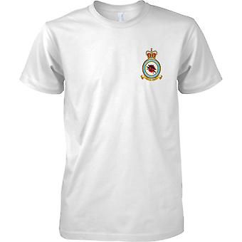 Vuelo de la Royal Air Force Memorial - real fuerza aérea t-shirt color
