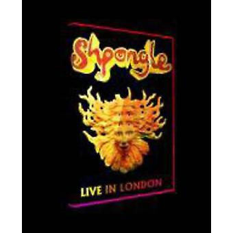 Shpongle - bor i London [DVD] USA import