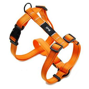 Bull Arnés Fluor Naranja T-1 20-40 X 1.0 Cm (Dogs , Walking Accessories , Harnesses)