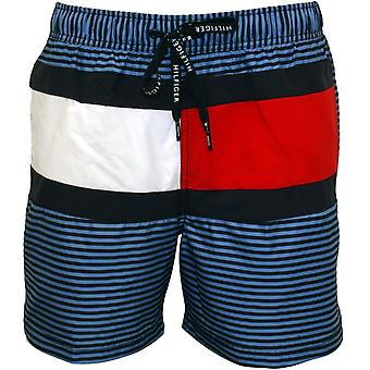 Tommy Hilfiger New Ithaca Stripe Flag Swim Shorts, Blue
