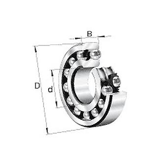 Nsk 1202Tn Double Row Self Aligning Ball Bearing