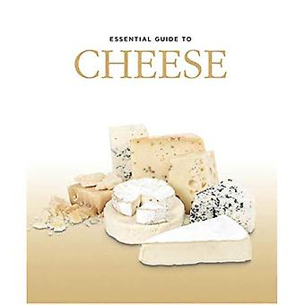 Essential Guide to Cheese