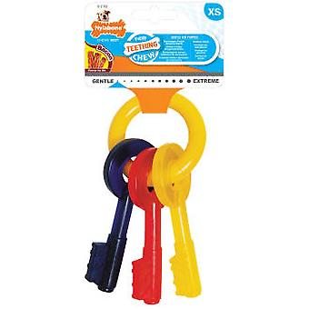 Nylabone Teething Keys (Dogs , Toys & Sport , Chew Toys)