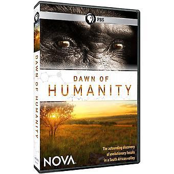 Nova: Morgendämmerung der Menschheit [DVD] USA import