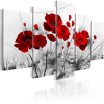 Billede - Poppies - Red Miracle