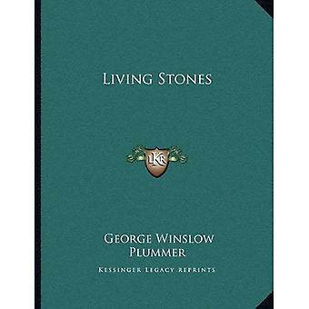 Lebendigen Steinen