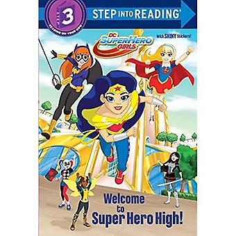 DC Super Hero Girls Deluxe Step Into Reading (DC Super Hero Girls)