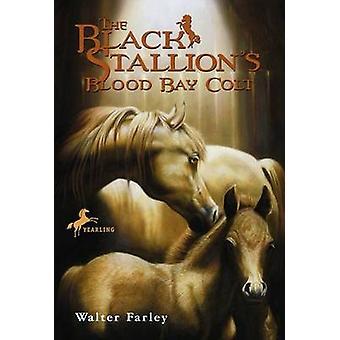 Black Stallion's Blood Bay Colt (Bullseye Books ed) by Farley - 97806