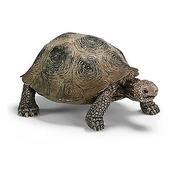 Schleich Giant tortoise (Toys , Dolls And Accesories , Miniature Toys , Animals)