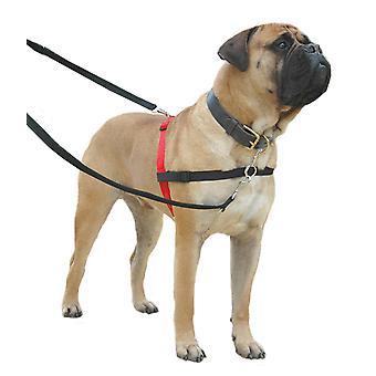 Halti nicht Pull Harness für große Hunde L Größe Hund Trainingssteuerung