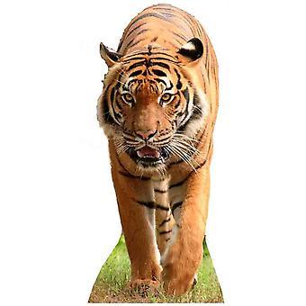 Tigre - recorte de cartón de tamaño natural / pie