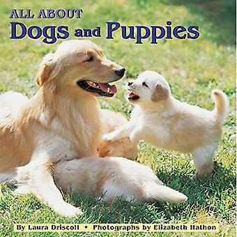 Allt om hundar och valpar (en Grosset & Dynlap alla ombord bok)